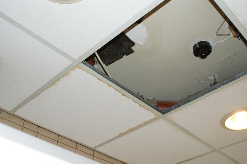 Rathaus feuchte Decke Damentoilette